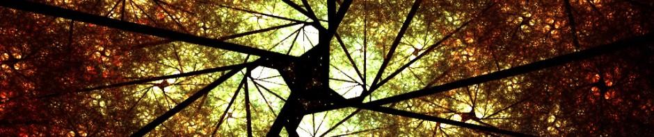 tree-natural-abstract-header-3768